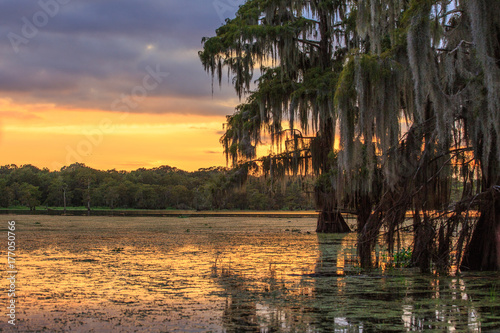 Photo Bayou Sunset