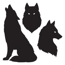 Set Of Wolf Silhouettes Isolat...