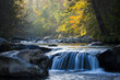 canvas print picture - Smooth flowing water falling over rocks downstream in forested environment landscape scene