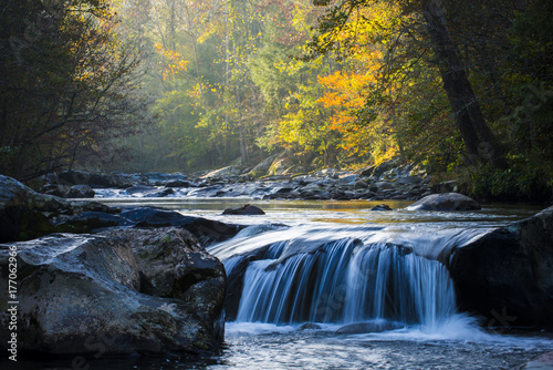 Fotomural  Smooth flowing water falling over rocks downstream in forested environment lands