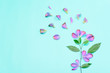 Decoration pink flower petals and leave branch on green background