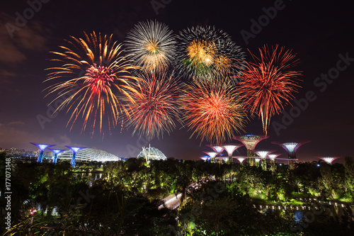 Photo  beautiful firework over Gardens by the bay at night, Singapore