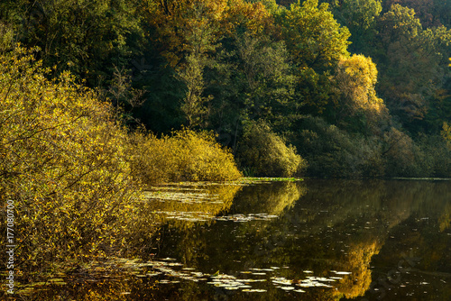 Photo  Herbstliches Farbenspiel am Teufelssee in Berlin-Köpenick