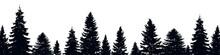 Fir Trees