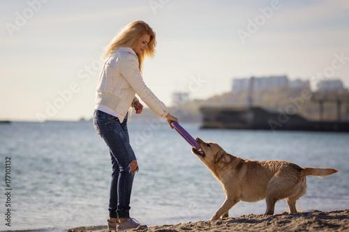 Fototapeta Szczęśliwa elegancka dziewczyna bawić się z labradora psem na plaży