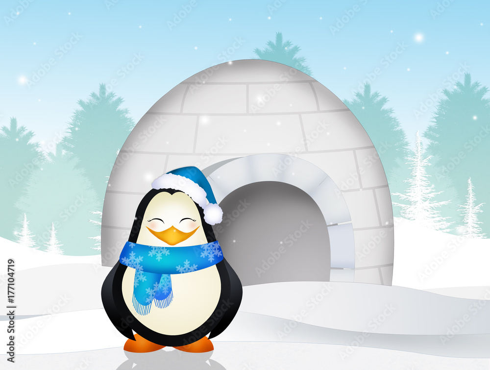 penguin in the igloo