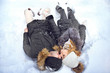 Couple kissing while lying in the snow top view upside down