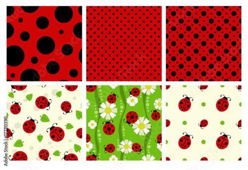 Fotomural Ladybug patterns set.