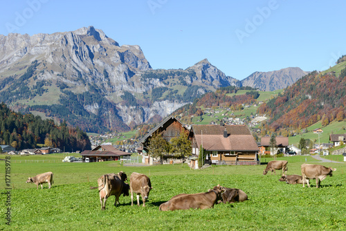 Photo Stands Grocery Rural landscape at the village of Engelberg on Switzerland