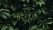 canvas print picture - foliage