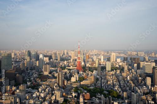Poster Tokyo 夕日に染まるの東京タワー(都市風景)