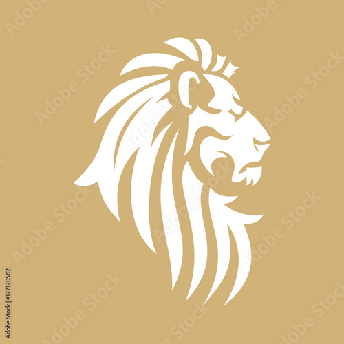 Fototapety, obrazy: Vector lion head image