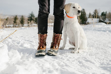 Puppy Standing In The Snow Next To Woman Wearing Boots