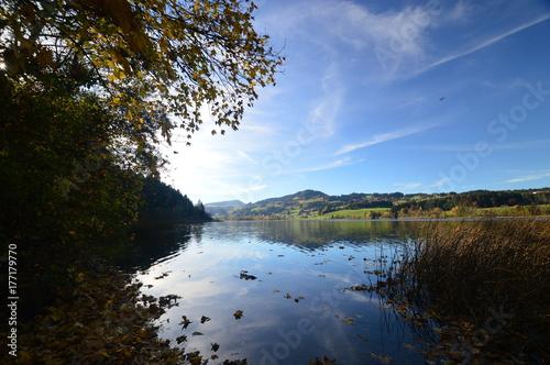 Plakat Widok na jezioro w październiku