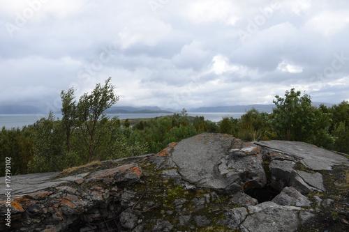 Fototapeta Norwegen, Norge, Alta, Altafjord, Fjord, Langfjorden, Langenesholmen, Insel, Bun