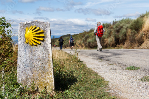 Fotografie, Tablou The yellow scallop shell signing the way to santiago de compostela on the st jam