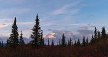 Mount. Denali