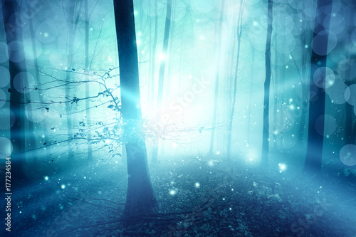 Fototapeta Magic blue foggy forest with ray of light bokeh background