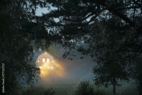 Illuminated house in forest during foggy weather