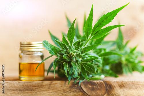 Fototapeta CBD oil hemp products obraz