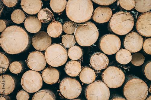 Türaufkleber Holz Pile of chopped woods, a log pattern bacground
