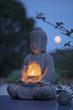 jardin zen asie calme