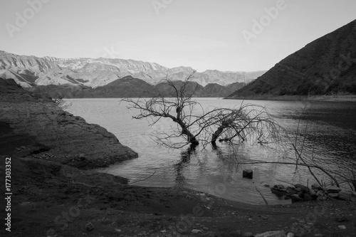 Keuken foto achterwand Grijze traf. lake in the mountains