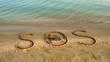 Crab and an inscription on sand, the beach.