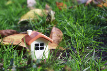 Doll House On The Green Grass ...