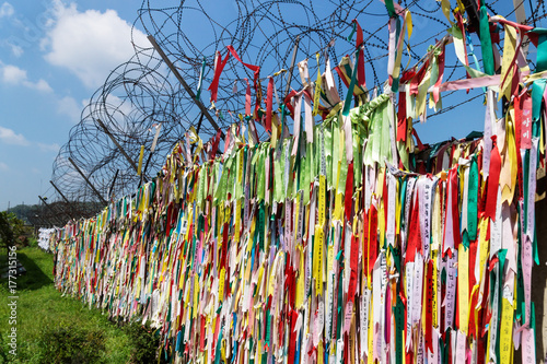 Fotografie, Obraz  millions of prayer ribbons as a sign of peace tied at fence at the demilitarised