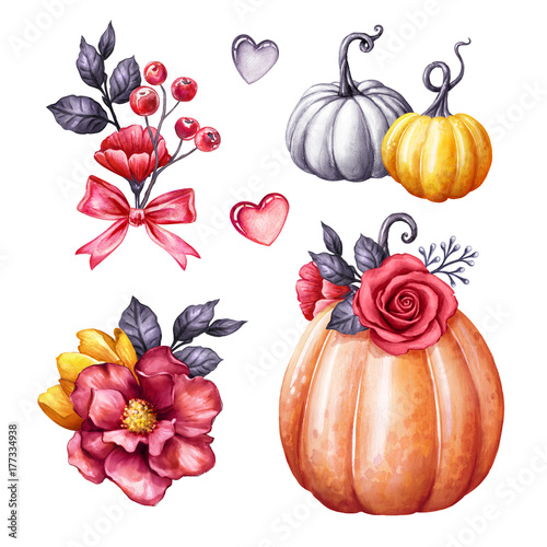 Autumn watercolor pumpkin illustration halloween ornaments fall autumn watercolor pumpkin illustration halloween ornaments fall flowers squash gourd festive mightylinksfo