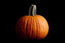 Big Orange Pumpkin On Black Background, Halloween Celebration