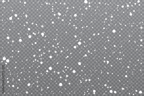 Canvas-taulu Realistic falling snow on transparent background