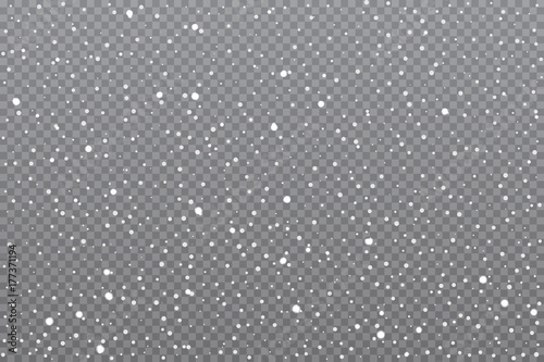 Realistic falling snow on transparent background. Vector illustration.