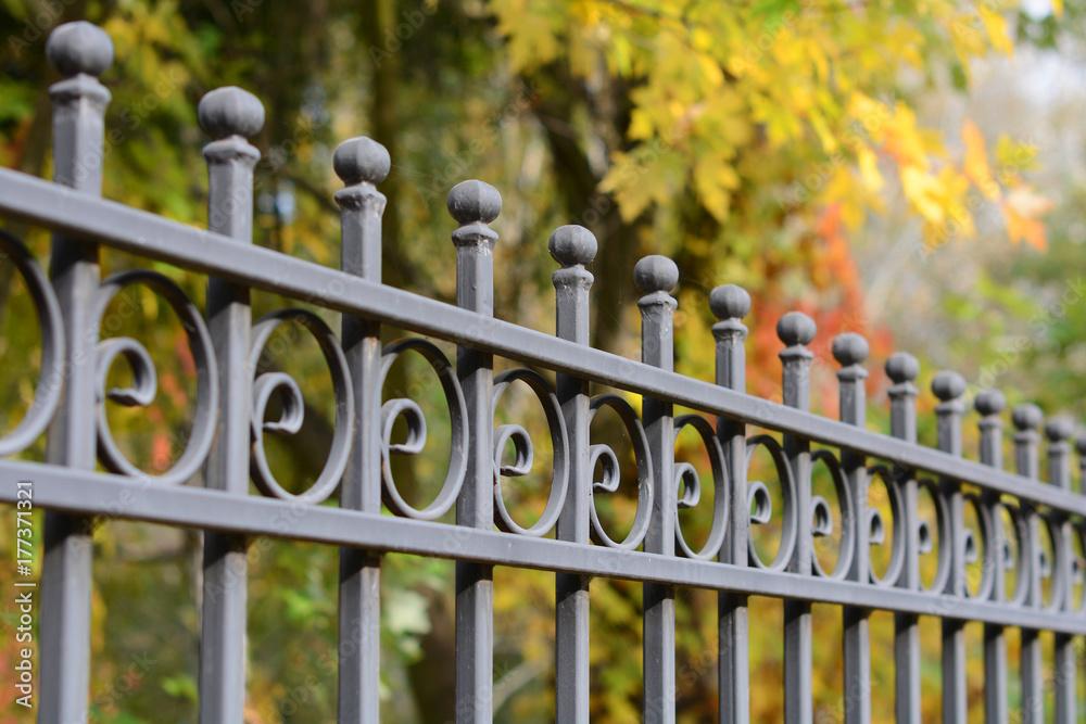 Fototapeta beautiful wrought fence. metal fence close up. Metal Forged Fence. beautiful fence with artistic forging