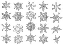 Snowflakes Illustration, Drawing, Engraving, Ink, Line Art, Vector