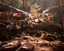 Prayer Flags On The Way To Taktshang- Tigers Nest Monastery , Bhutan.