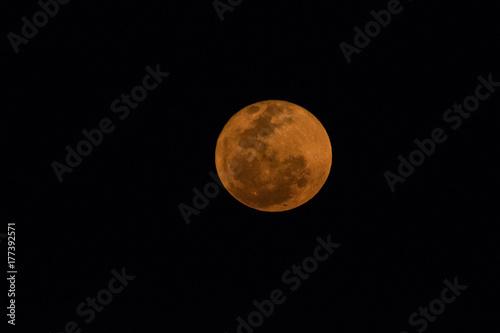 Fototapeta Zamyka w górę wizerunku krwionośna księżyc w karoo w Południowa Afryka