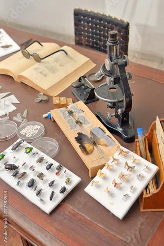 Entomologist office with Tools Tapéta, Fotótapéta