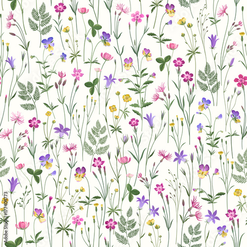 ozdobny-wzor-kwiatowy-z-kwiatow-laka
