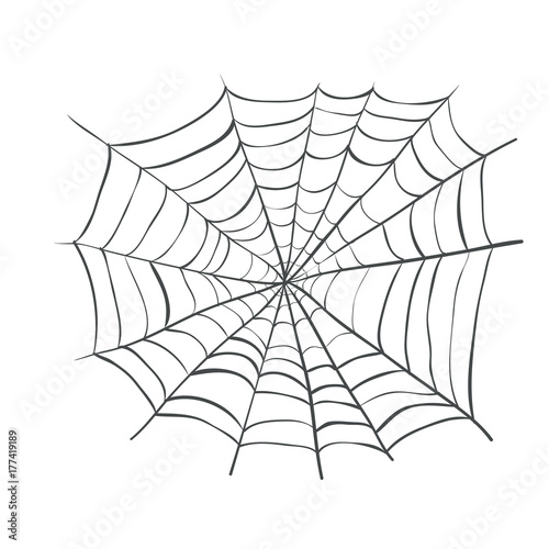 Fotografiet spiderweb, Web Spider Vector Illustration. Webbing weaving
