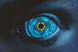 Biometrics, innovation and access concept