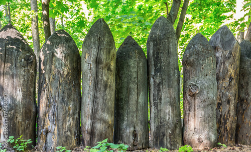 Photo  Old fence of sharpened logs in the forest
