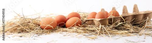 Egg. Fresh farm eggs on a white background.