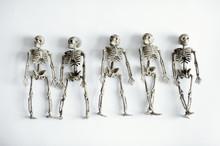 Five Skeletons On White