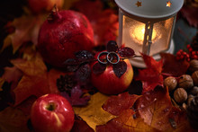 Engagement Rings In Autumn Song