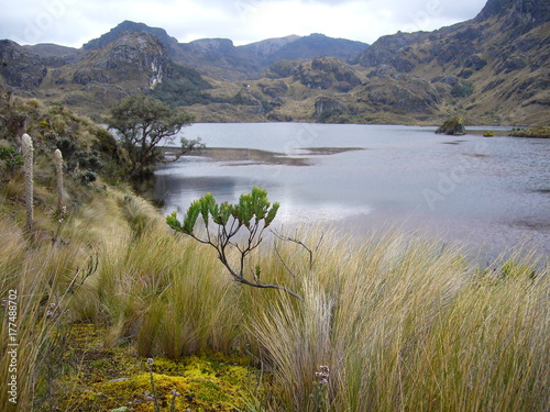 bewildering scenery at El Cajas national park in the andes of Ecuador Canvas Print