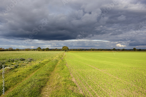 Foto op Canvas Pistache storm clouds in yorkshire