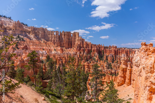Fotobehang Canyon Beautiful landscape. Green pine-trees on rock slopes. Scenic view of the canyon. Bryce Canyon National Park. Utah. USA