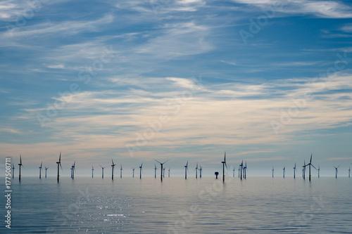 Valokuvatapetti Wind farm near IJmuiden, The Netherlands
